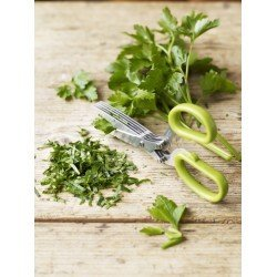 Fresh Herb Scissors 5 blades Stainless Steel