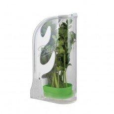 Herb Preparation and Storage