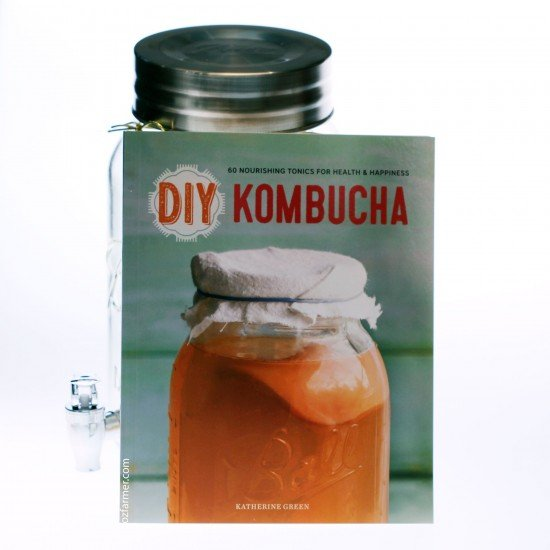 DIY Kombucha: 60 Nourishing Homemade Tonics for Health and Happiness (9781623154752)