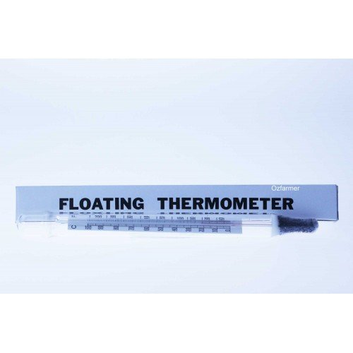Floating Dual Scale Mercury Free Thermometer